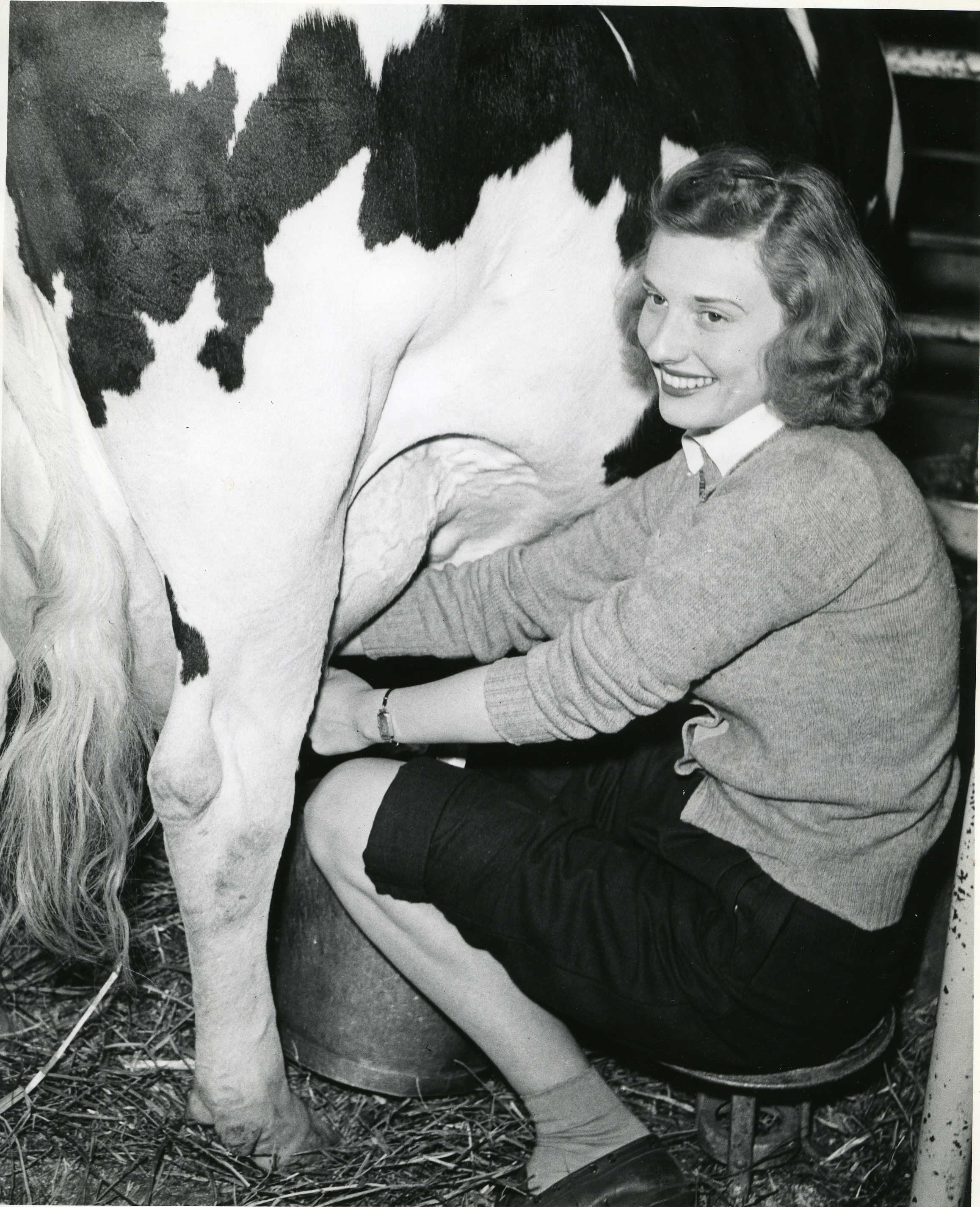 Milking a woman like a cow